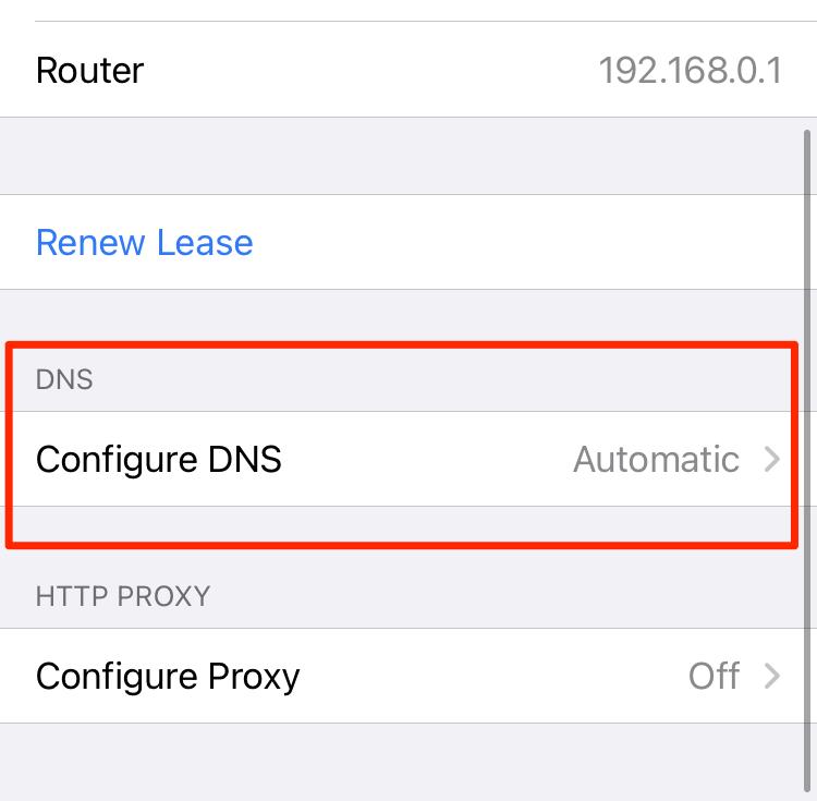Configure los parámetros DNS en una conexión WLAN iOS